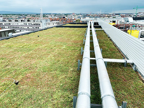 4Front Case Studies Green Roofing